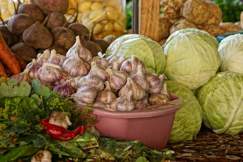 A bunch of fresh vegetables from garlic cabbage and greens on a table stock images