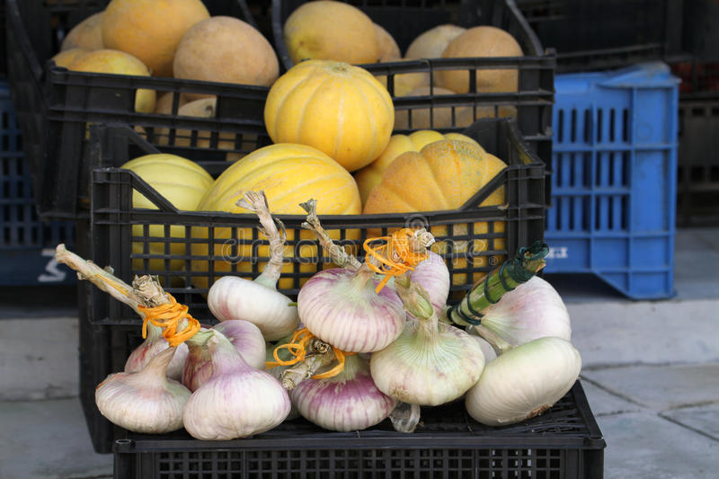 Bunch of Garlic and Pumpkins in the Crate royalty free stock photos