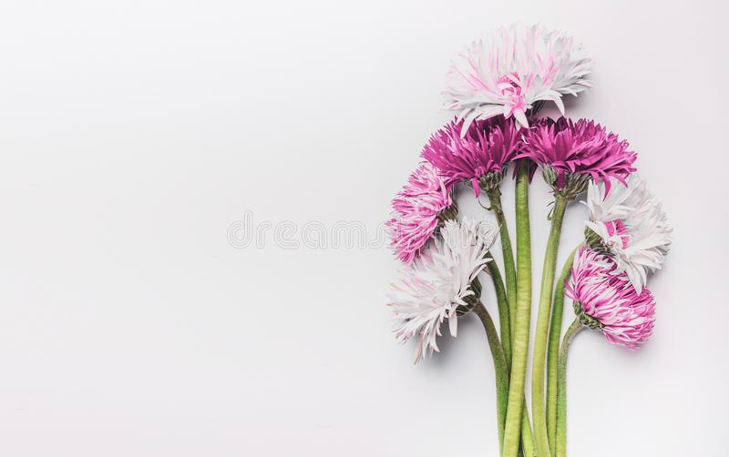 Bunch of gerbera daisies flowers on white desk, top view with copy space. Can used to Mothers day , Womens day, birthday or. Wedding. Greeting card stock photo