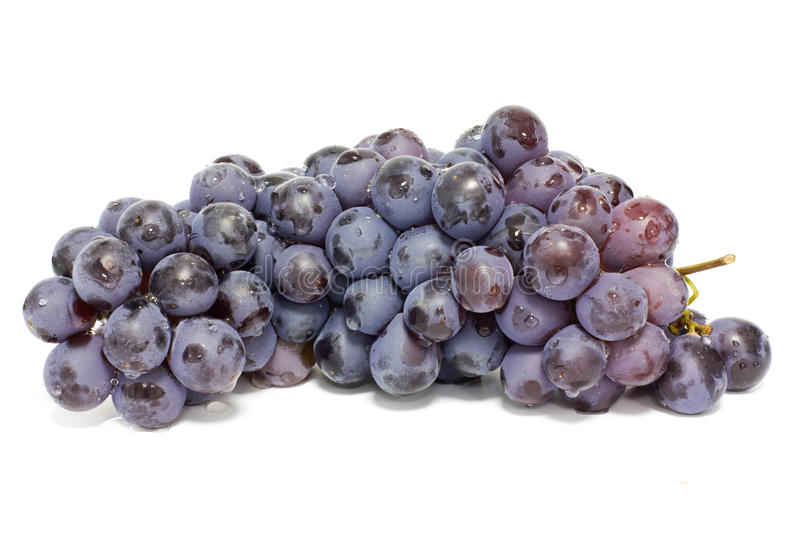 Download Bunch of grape stock photo. Image of vineyard, food, grape - 10868118