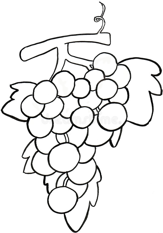 Download A bunch of grapes b/w stock illustration. Image of book - 8236897