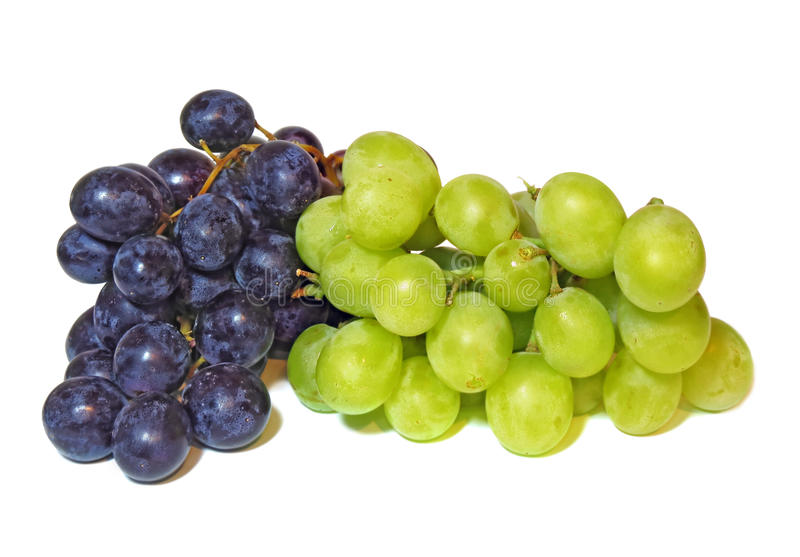 Bunch of grapes. Bunch of dark and green grapes isolated on a white background stock photography