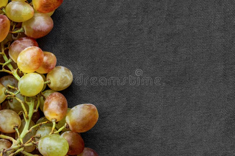 Bunch of grapes isolated on gray fabric background, bunch of ripe green and yellow grapes without foliage royalty free stock images