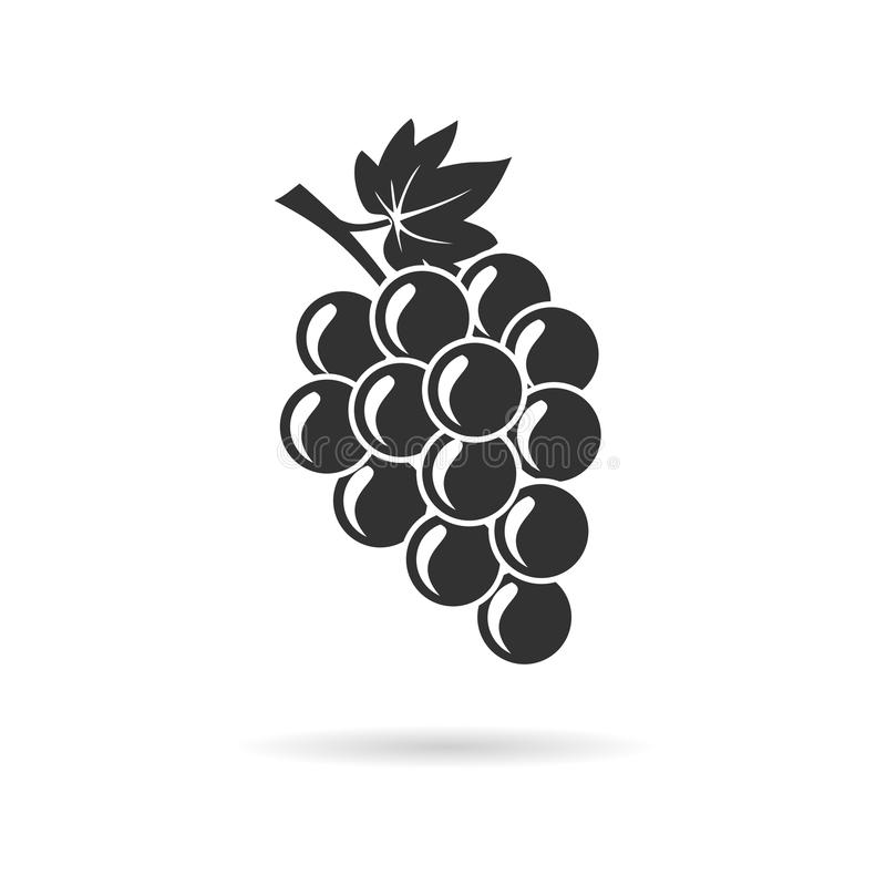 Bunch of grapes with leaf vector illustration