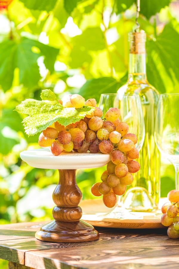Bunch of grapes with water drops on the table. Wine glasses and bottle of wine. Sunny garden with vineyard background stock photos