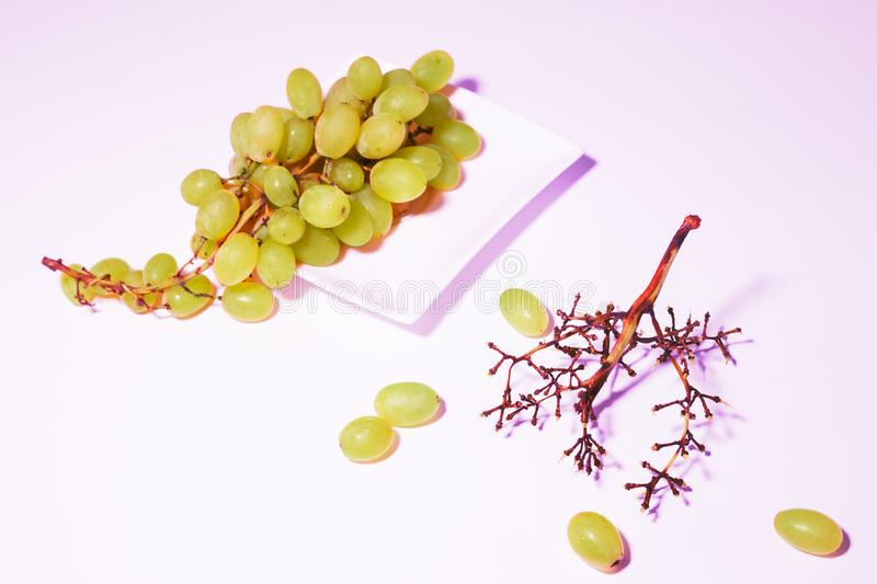 Bunch of grapes. Bunch of white grapes on dish empty eaten bunch close to on white background. Slight purple colour tint filter effect. Food concept stock photo