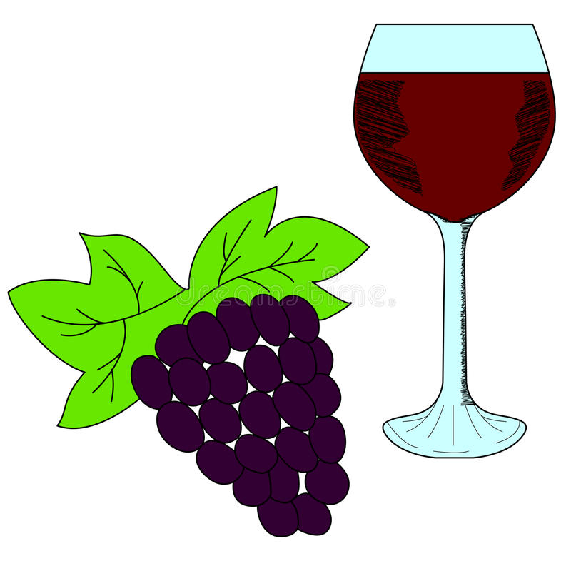 Bunch of grapes and wineglass. Red wine. vector illustration