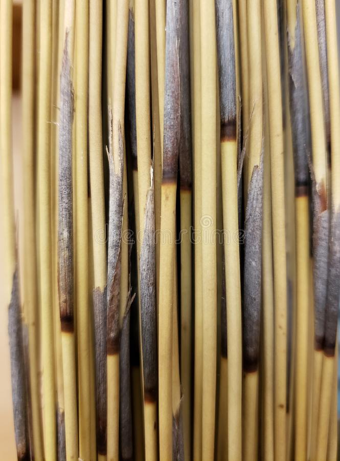 Dried grass stems textures and background royalty free stock photography
