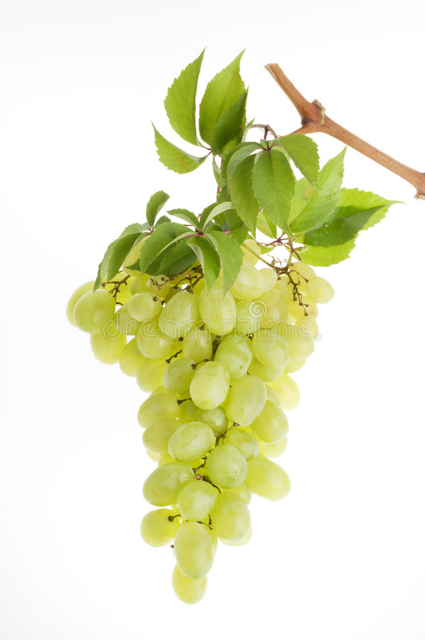 Bunch of green grape over white royalty free stock photography