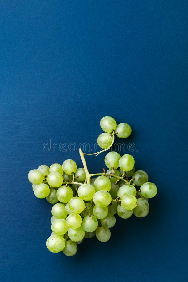 Bunch of green grape. royalty free stock photography