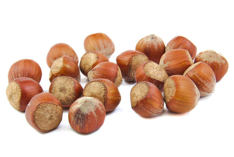 Bunch of hazelnuts stock images