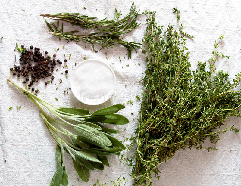 Download Bunch of herbs for cooking stock image. Image of garlic - 28196309