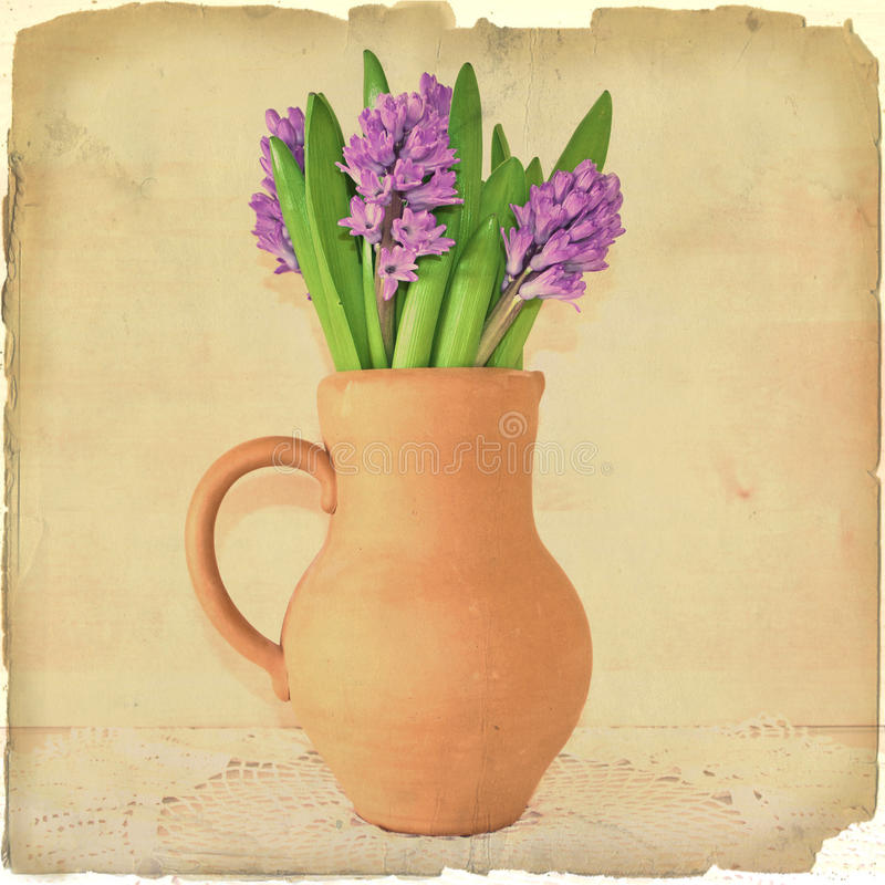 Bunch of hyacinths in a clay pot on old paper royalty free stock photography