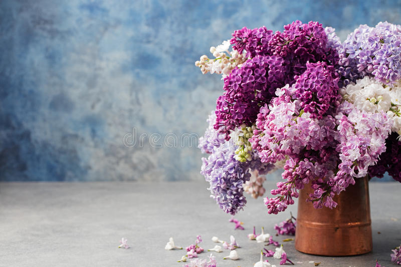 Bunch of lilac flowers in a cooper vintage jug. Blue background Copy space stock images
