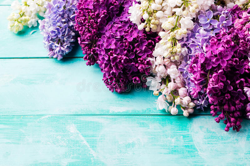 Bunch of lilac flowers. Top view. Copy space. stock photography