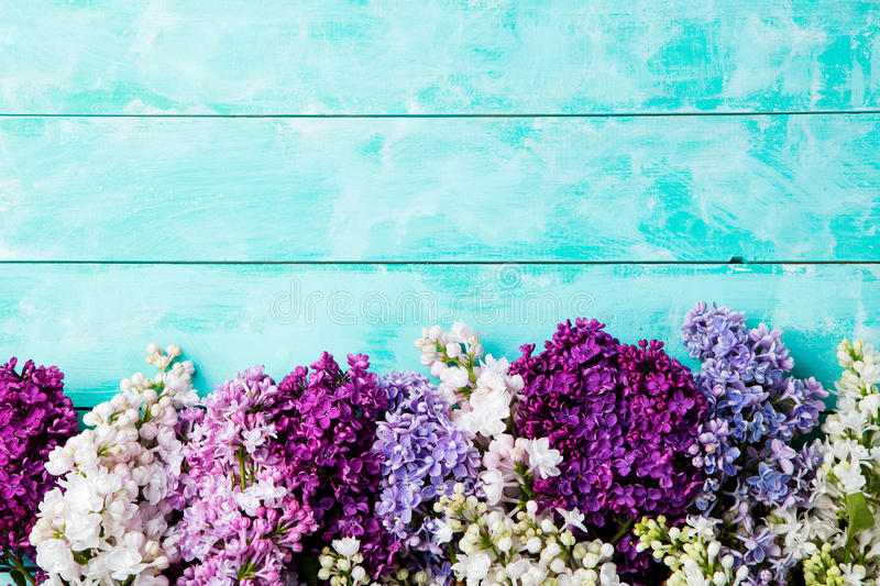 Bunch of lilac flowers on a turquoise wooden background. Top view. Copy space. royalty free stock photography