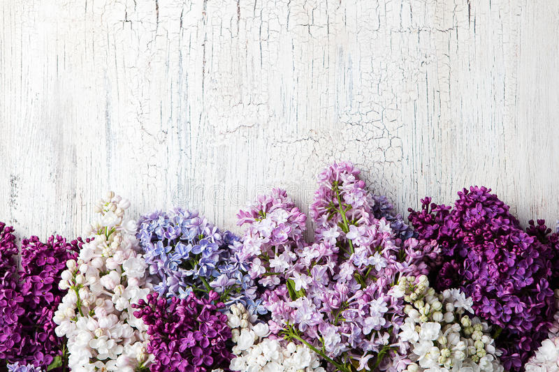 Bunch of lilac flowers on a white crackling effect background. Top view. Copy space. royalty free stock images