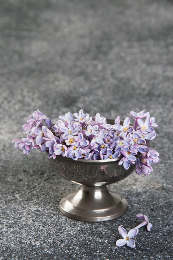Bunch of lilac in vintage bowl on gray background royalty free stock photo