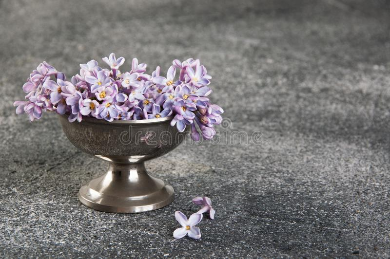 Bunch of lilac in vintage bowl on gray background stock photos