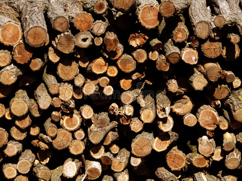 A bunch of logs stock image