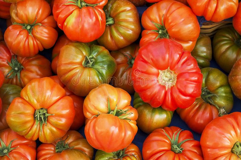 Bunch of mixed red and yellow cherry and italian tomatoes on background. Spring summer detox vegetable diet. Close up of harvest stock photography
