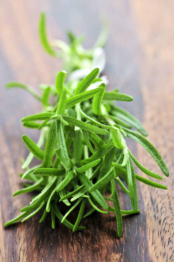 Free Bunch Of Fresh Rosemary Stock Photography - 6340342