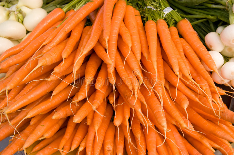 Bunch of Organic Carrots stock images