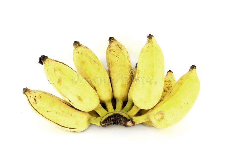 Bunch of over ripe bananas royalty free stock photos
