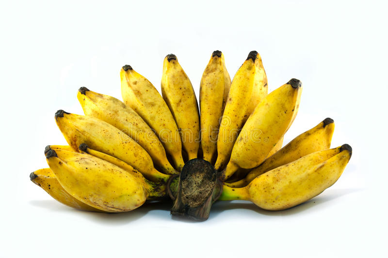 Download Bunch of overripe Bananas stock image. Image of ripe - 39508147