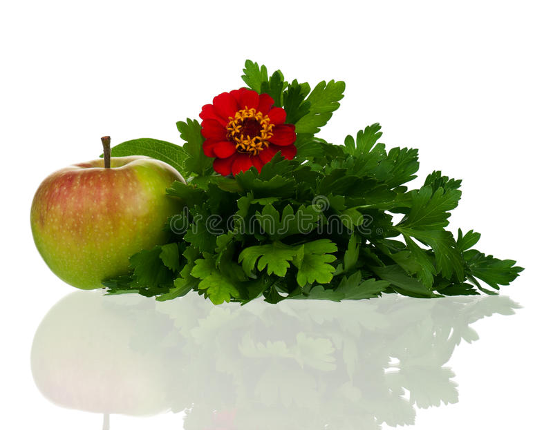 Download Bunch of parsley stock photo. Image of figure, leaf, apple - 26839888