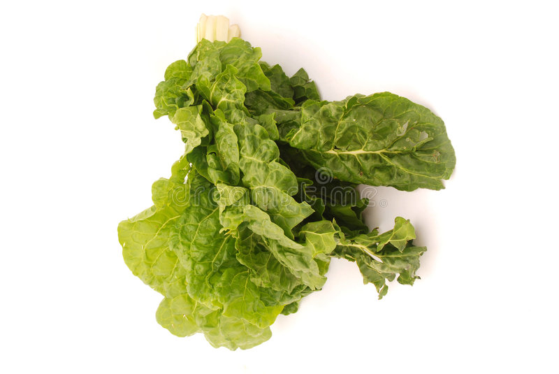 Download Bunch of perpetual spinach stock photo. Image of perpetual - 4491142