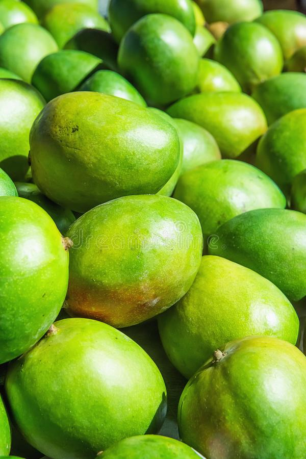 Bunch Pile of Ripe Vibrant Green Mangoes at Farmers Market in Asia. Bright Sunlight. Travel Lifestyle Image. Vitamins Superfoods. Healthy Diet Concept stock photo