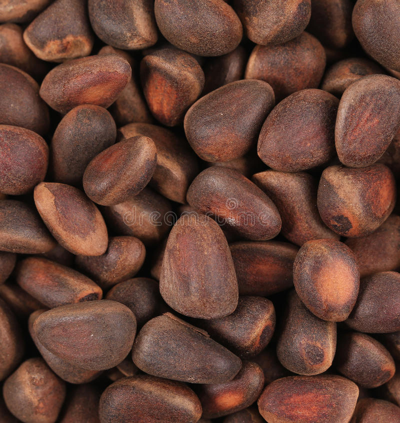 Bunch of pine nuts. royalty free stock photo
