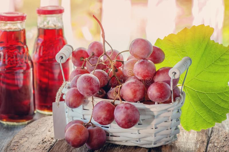 A bunch of pink grapes, prepared to extract the juice, is in a white basket . Two bottles of grape juice are on the table next to royalty free stock photography