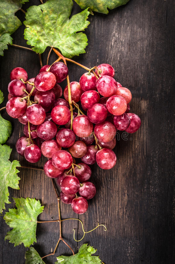 Bunch of pink juicy grapes from vine and leaves on dark wooden table royalty free stock photo