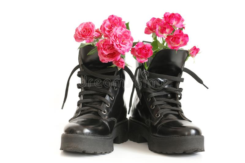 Bunch of pink roses in black combat boots. Bunch of pink rose flowers in black combat boots isolated on white background stock images