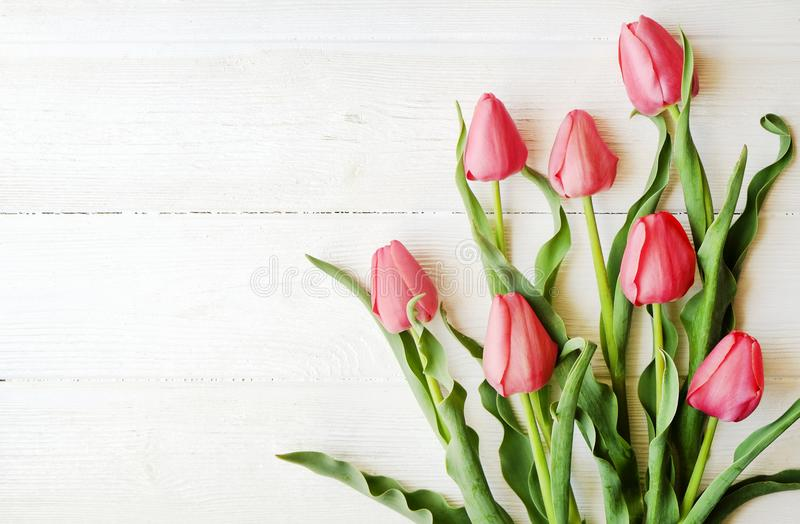 Bunch of pink tulip in beautiful spring holidays composition lying on white wooden textured table background. Mother`s day bouque royalty free stock photo