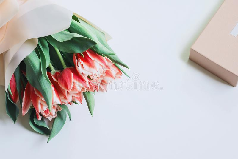 A bunch of pink tulips with a gift box on white background. Spring concept. Greeting card with flowers. Flat lay, top view royalty free stock image