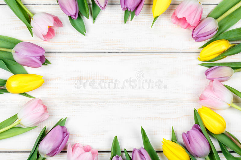 Bunch of pink and yellow tulips on a white wooden background stock photos