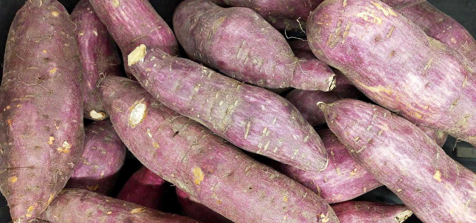 Bunch of sweet potatoes royalty free stock image