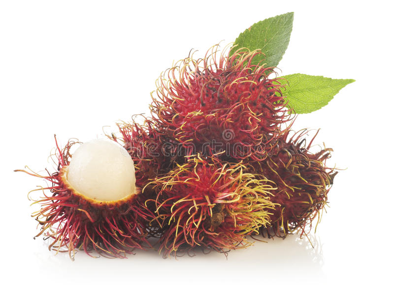 Bunch of rambutan isolated on white background royalty free stock images