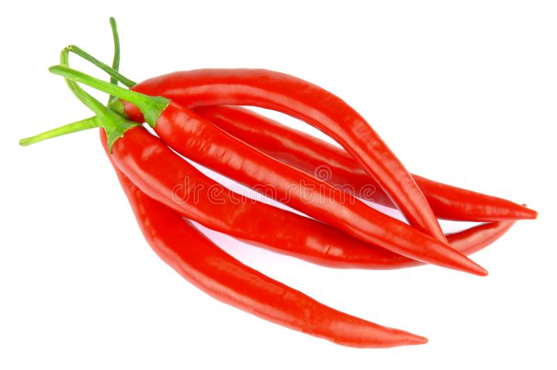 Bunch of red chili peppers royalty free stock photos