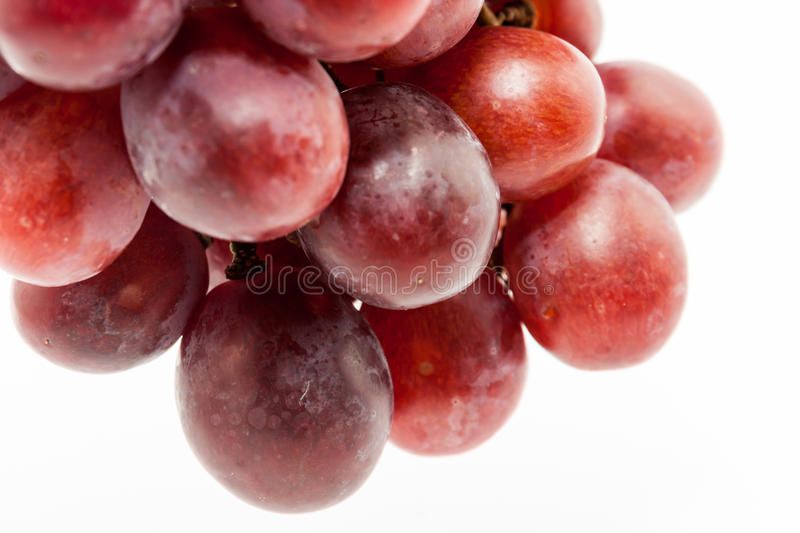 Bunch of red grapes. Big red grapes isolated in white background royalty free stock photos