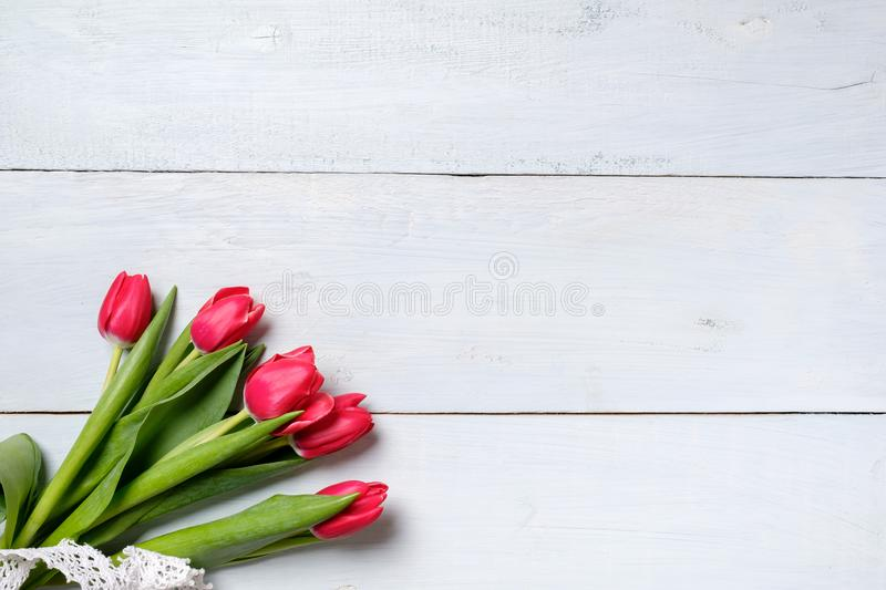 Bunch of red tulips on blue wooden table. Banner mockup card with copy space for congratulation, woman or mother day, easter, spri. Ng holiday, birthday royalty free stock photo