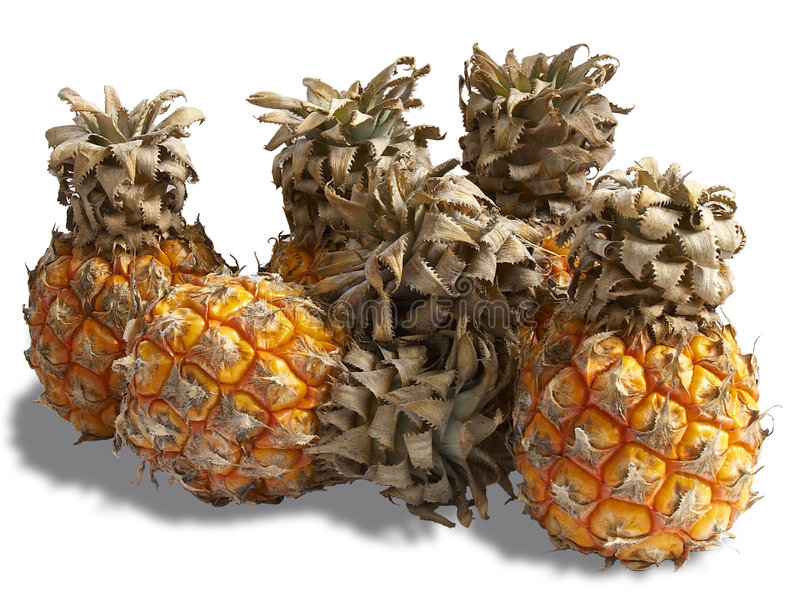 Bunch of small pineapples royalty free stock photography