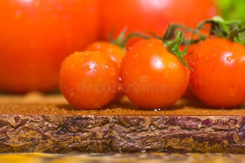 A bunch of small red cherry tomatoes. A grapple of fresh round cherry tomato with water drops royalty free stock image