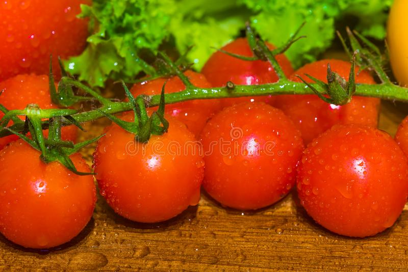 A bunch of small red cherry tomatoes. A grapple of fresh round cherry tomato with water drops stock image