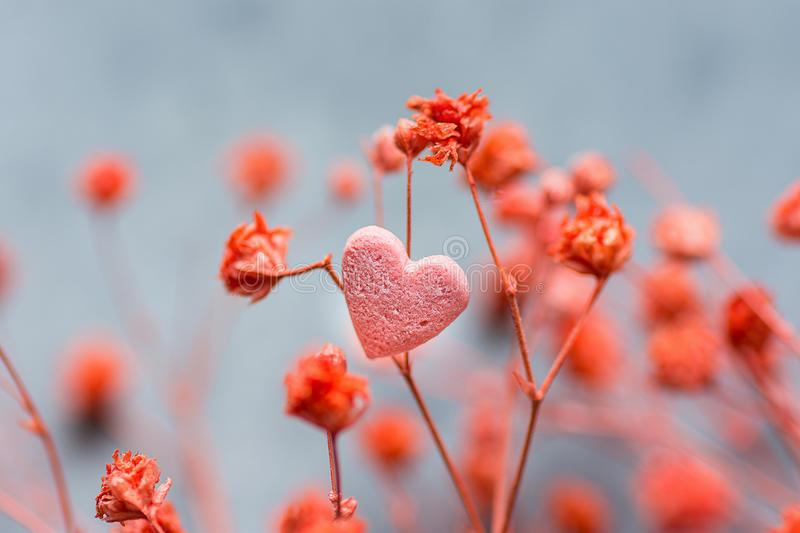 Bunch of Small Red Delicate Flowers Single Heart Shape Sugar Candy on Dark Grey Background. Romantic Valentine Mother`s Day royalty free stock images