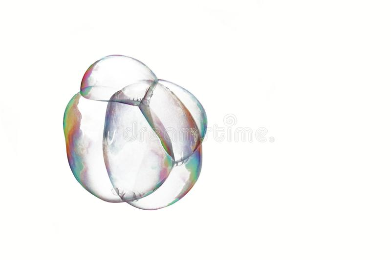 A bunch of soap bubbles isolated on a white background. A bunch of air cells. Zygote from transparent cells. Embryo in the initial royalty free stock photos