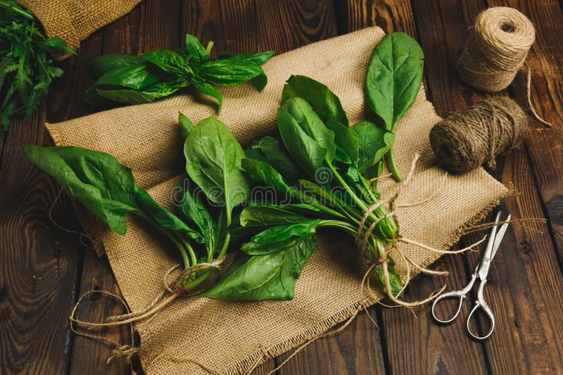A bunch of spinach on a napkin leaves on a dark wood background. stock photos